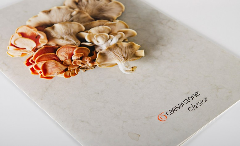 Caesarstone Marketing Materials